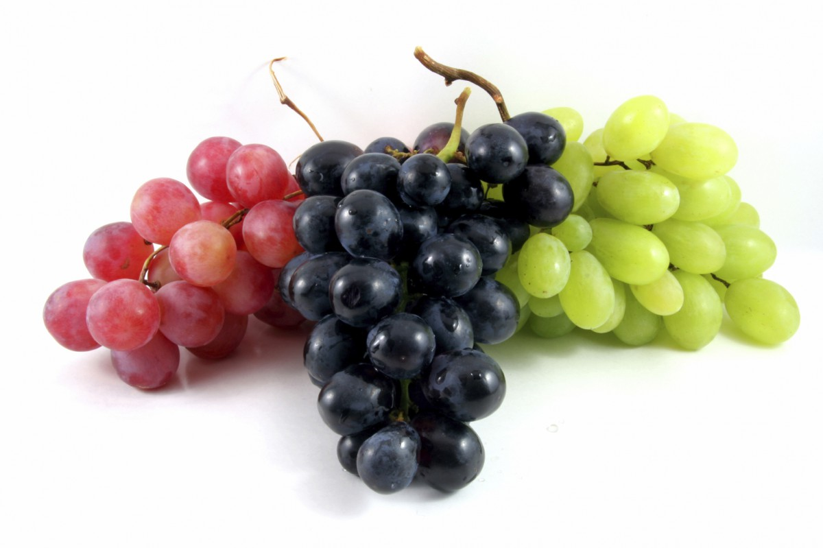 Виноград – польза и вред для организма