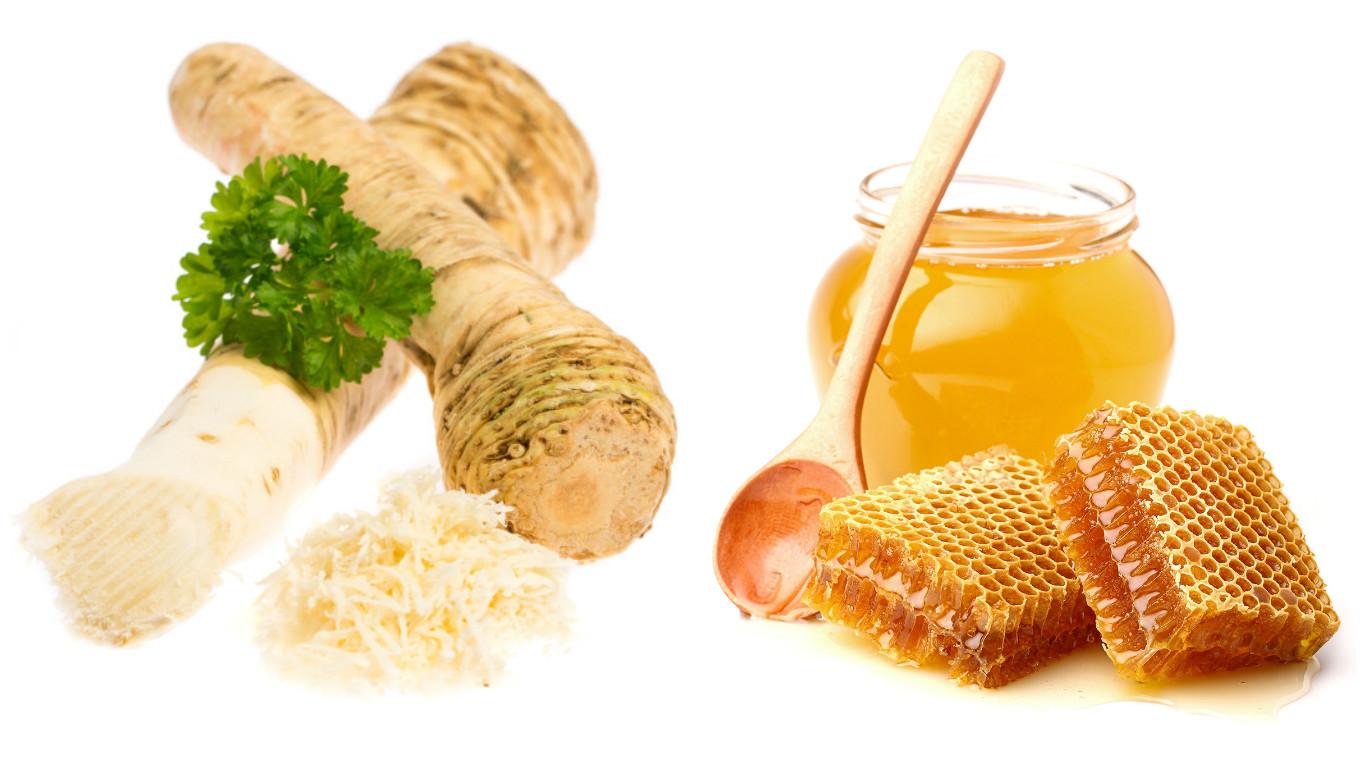 Хрен польза и вред для здоровья организма. Хрен с медом: польза для здоровья