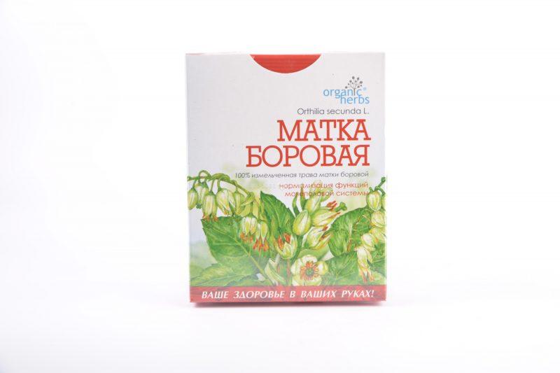 Трава боровая матка - лечебные свойства для женщин