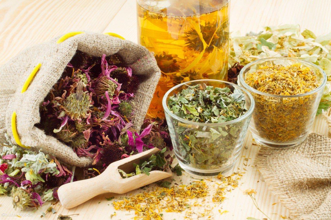 Лечение панкреатита в домашних условиях травами