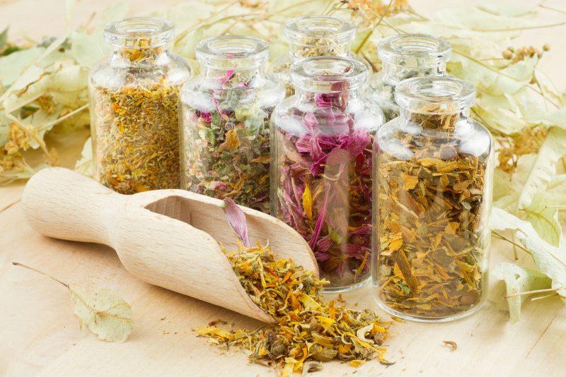 Лечение холецистита народными средствами – самые эффективные методики