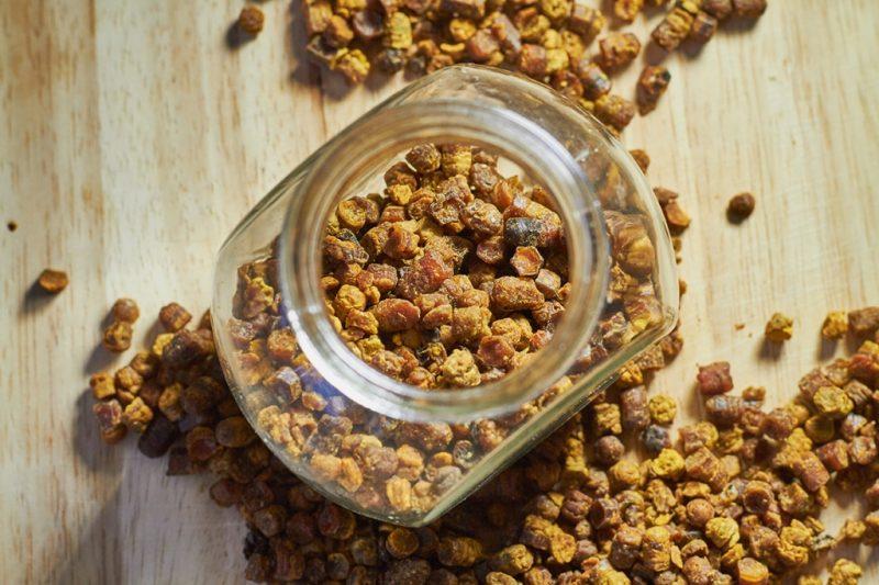 Перга пчелиная: полезные свойства, противопоказания и как принимать