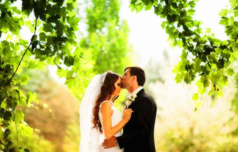 сонник увидеть свадьбу во сне
