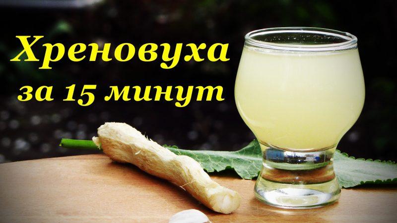 Хреновуха рецепт из водки спирта самогона со специями