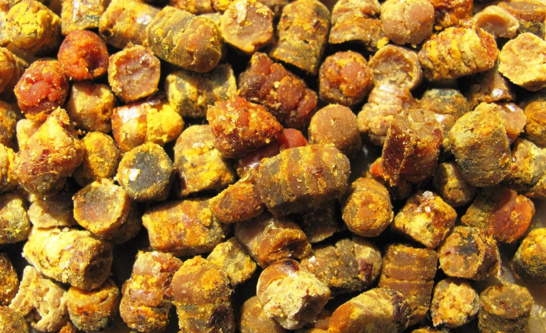 Что такое перга пчелиная