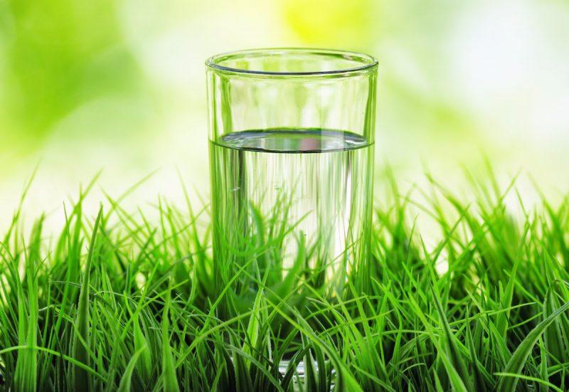 Народные слабительные средства быстрого действия при запорах - натуральные продукты и травы