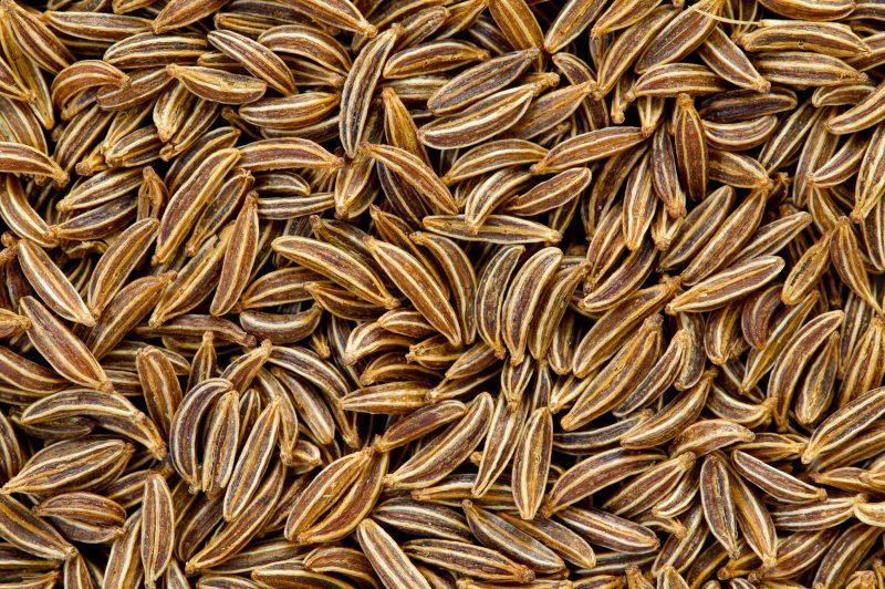 Тмин – лечебные свойства и противопоказания Черного тмина
