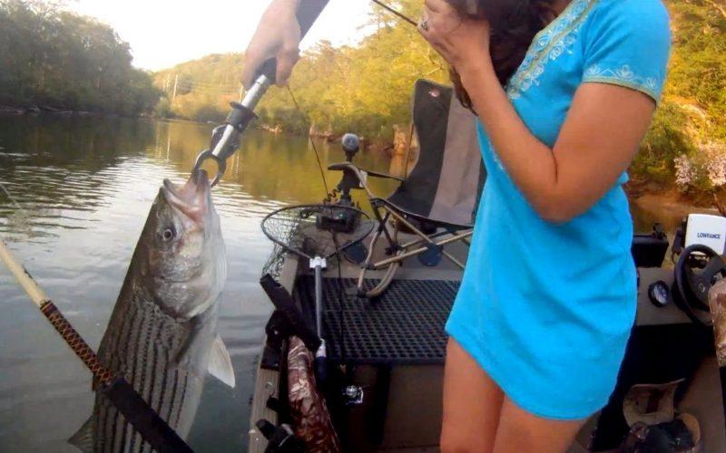 Ловить поймать но не чему к рыбу снится