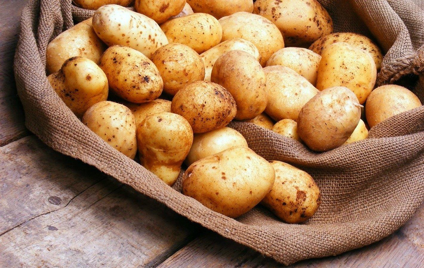 Сонник видеть картофель во сне