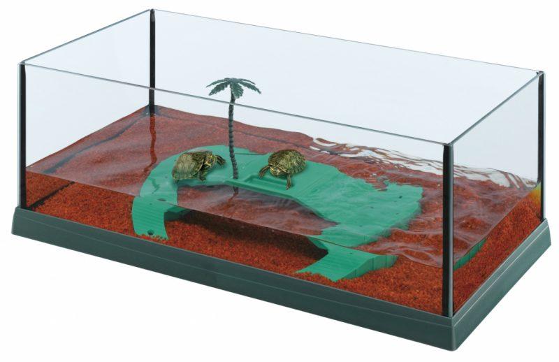 Сонник черепаха в воде к чему снится черепаха в воде во сне