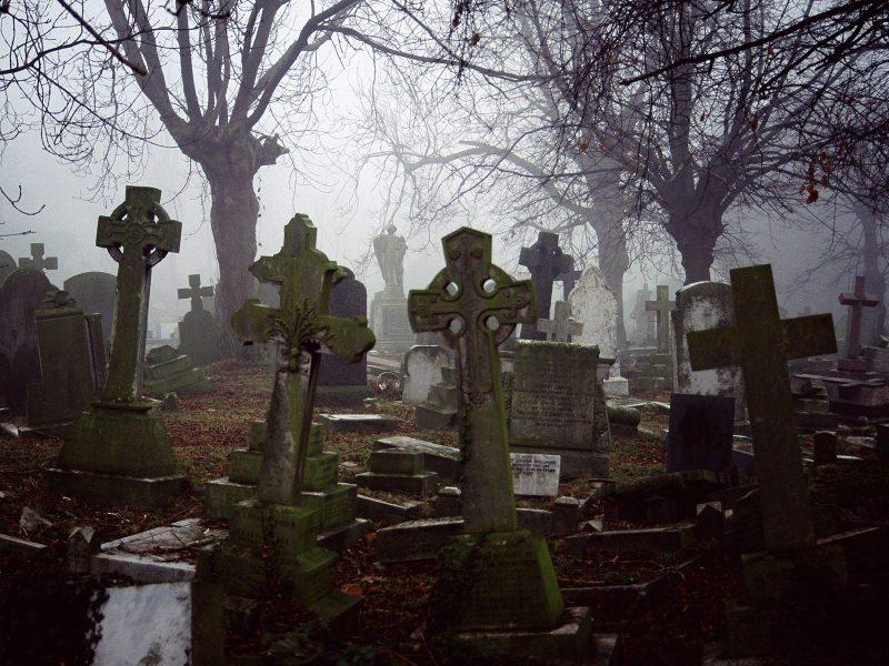 Сонник ванги сниться кладбище