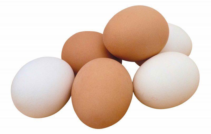 сонник куриные яйца много в гнезде
