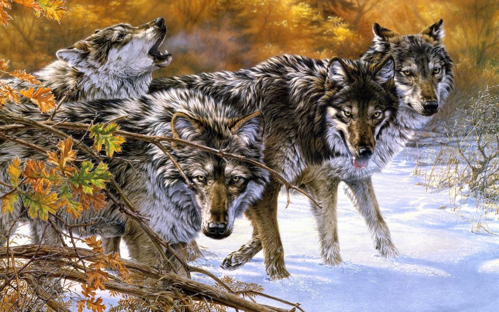 К чему снится преследующий волк девушке сонник