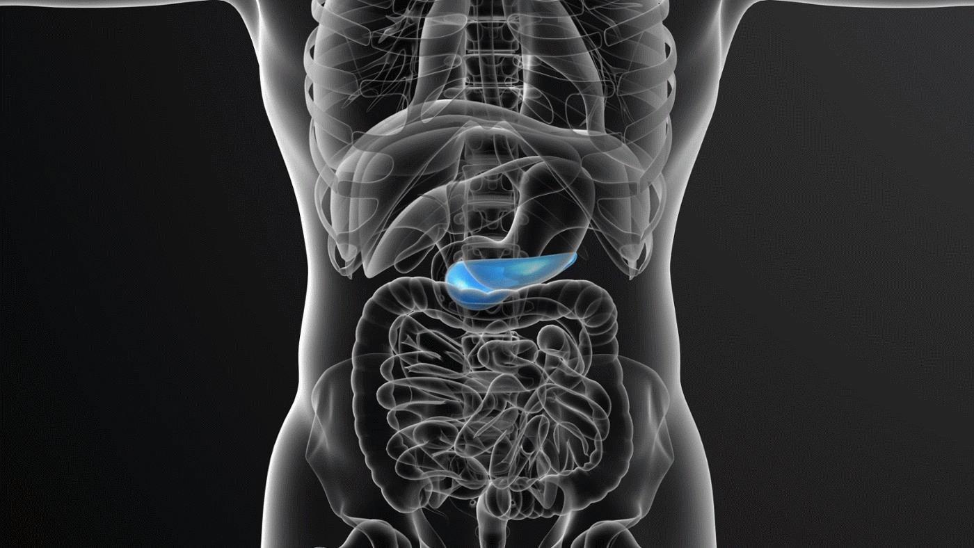 Воспаление поджелудочной железы - причины, симптомы и лечение. Воспаление поджелудочной железы — профилактика осложнений - Женское мнение