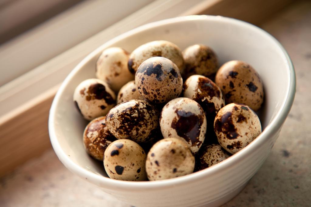 Перепелиные яйца  польза и вред как принимать скорлупу сырые натощак