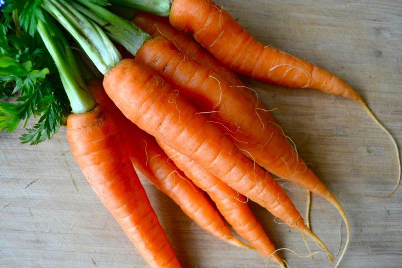 Морковь — польза и вред для организма: корень, ботва или сок?