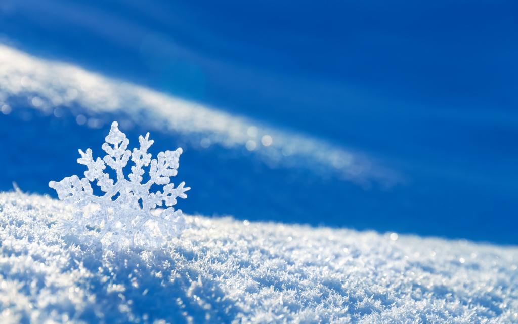 К чему снится много снега осенью