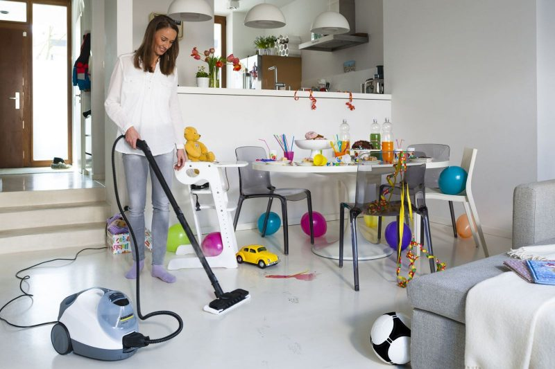 Как избавиться от блох в доме быстро в домашних условиях