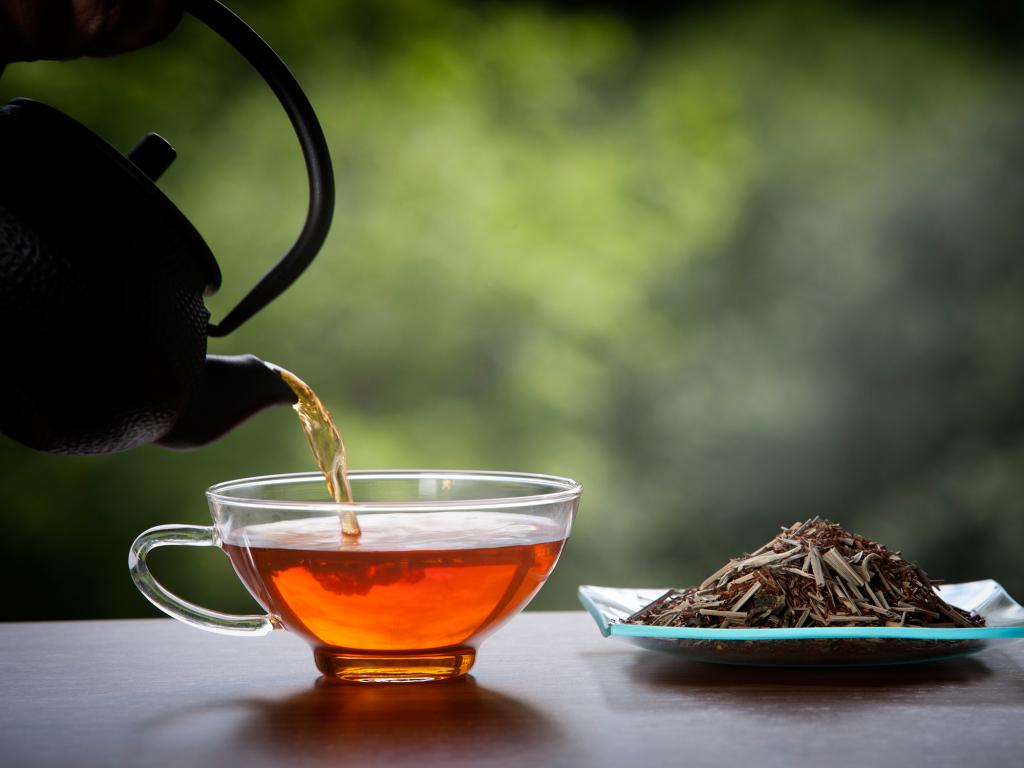 Чай ройбуш отзывы и полезные свойства