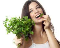 Кинза: польза и вред для здоровья женщины, полезные свойства и противопоказания