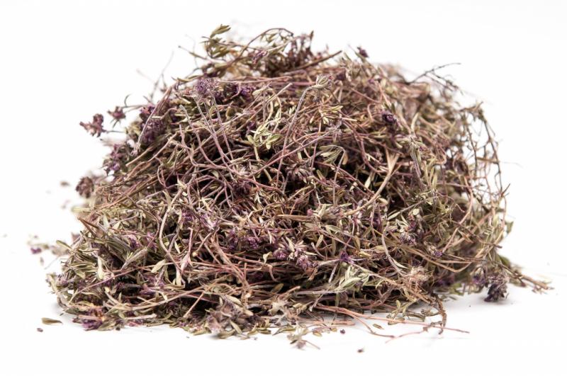Тимьян ползучий (чабрец): лечебные свойства и противопоказания