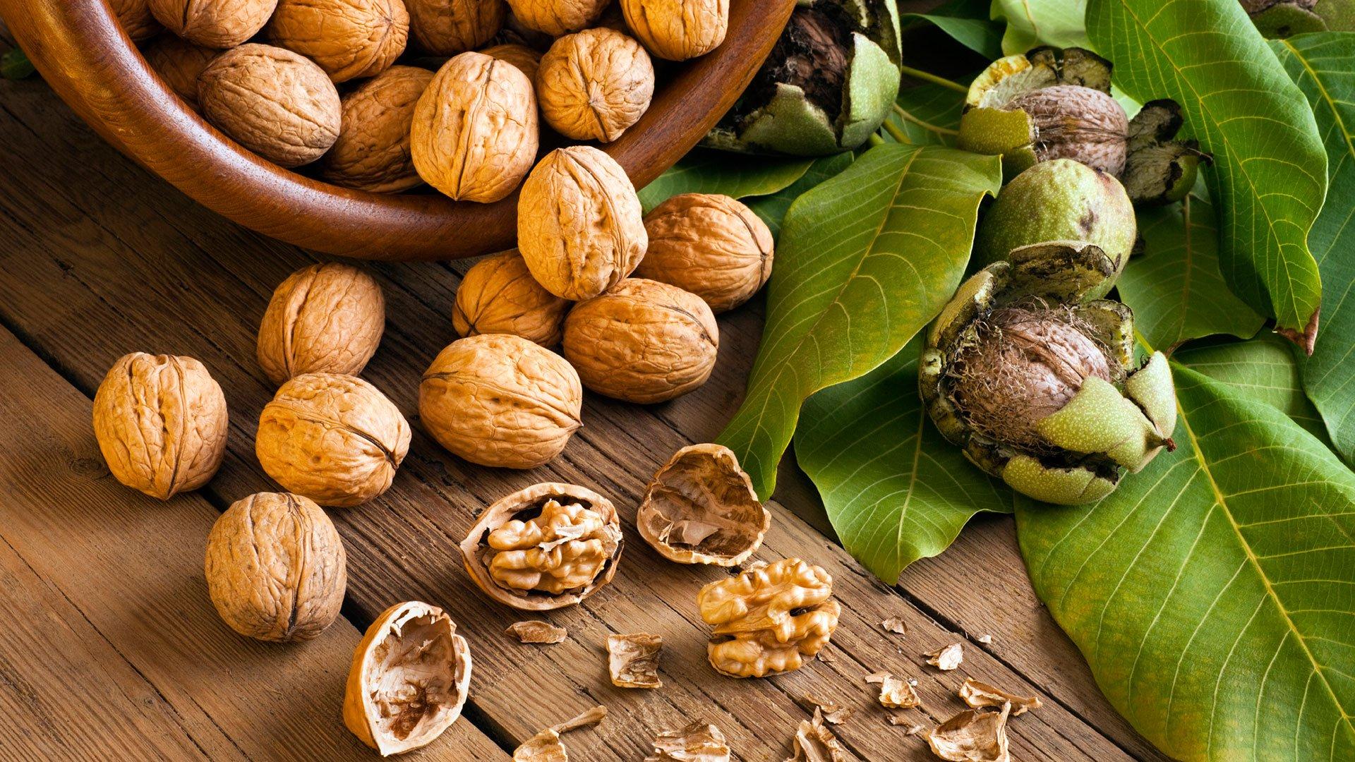 Орехи полезные свойства и вред