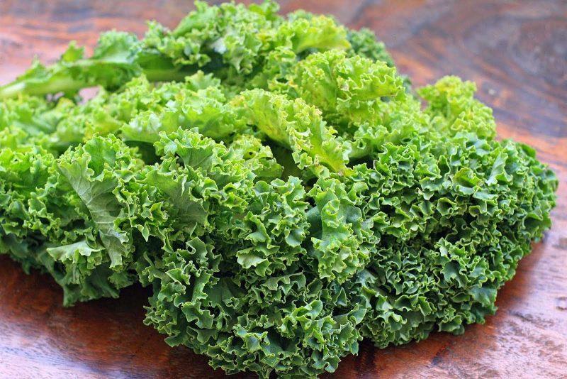 Капуста Кейл (капуста Кале) – что это такое, полезные свойства и применение