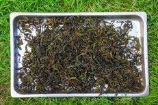Копорский чай: полезные свойства и противопоказания