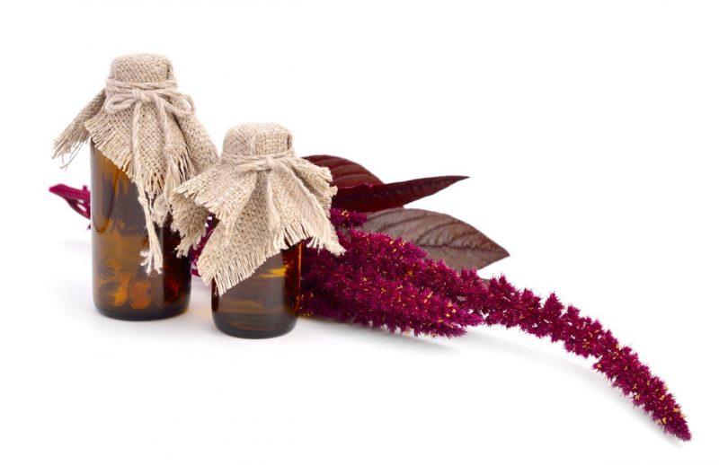 Амарантовое масло: полезные свойства и применение