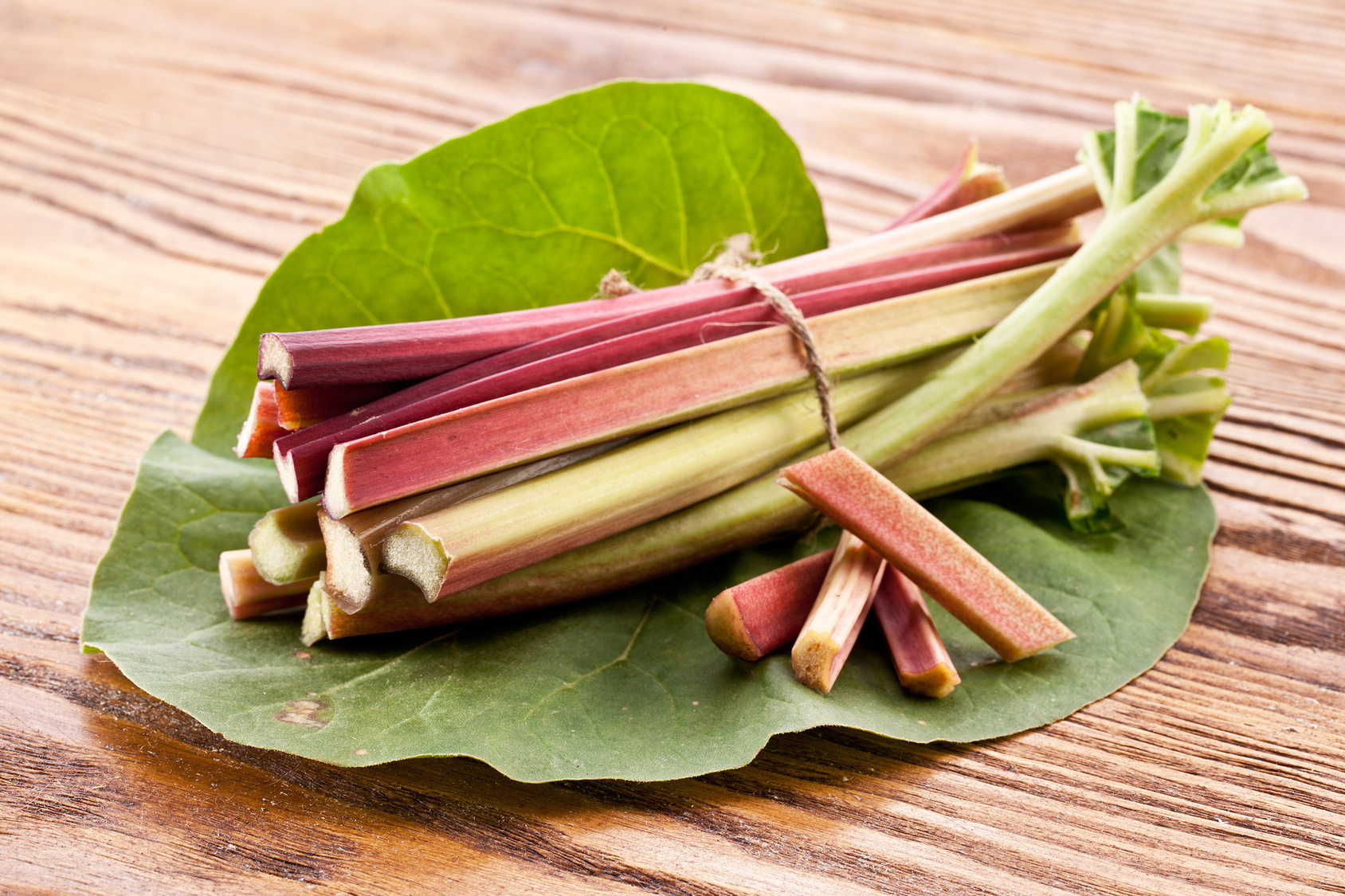 Ревень полезные свойства и народные рецепты из ревеня