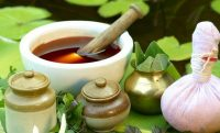 Индийский лук: лечебные полезные свойства и применение в народной медицине