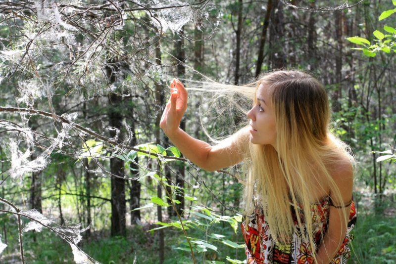 Сонник снимать паутину веником