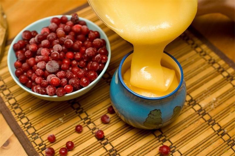 Калина с медом - полезные свойства и противопоказания