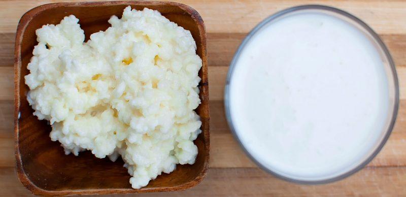 Молочный гриб - как ухаживать и употреблять?