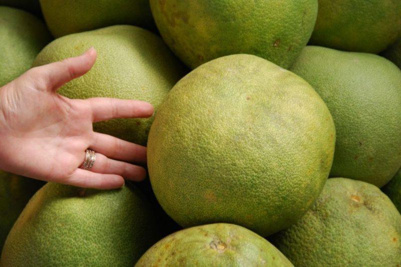 Помело фрукт: полезные свойства, польза для организма и возможный вред