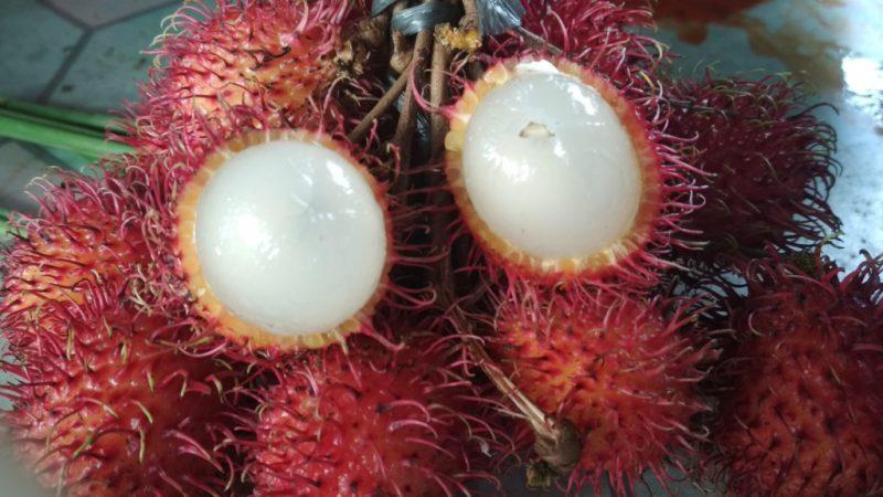 Рамбутан: как его едят и какие полезные свойства фрукта?