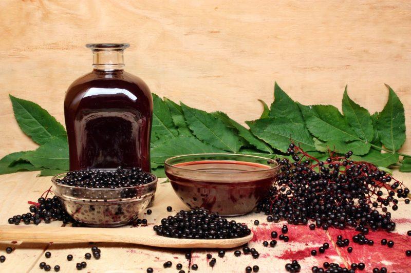 Настойка из черноплодной рябины: польза и вред, как приготовить на водке, самогоне и спирту
