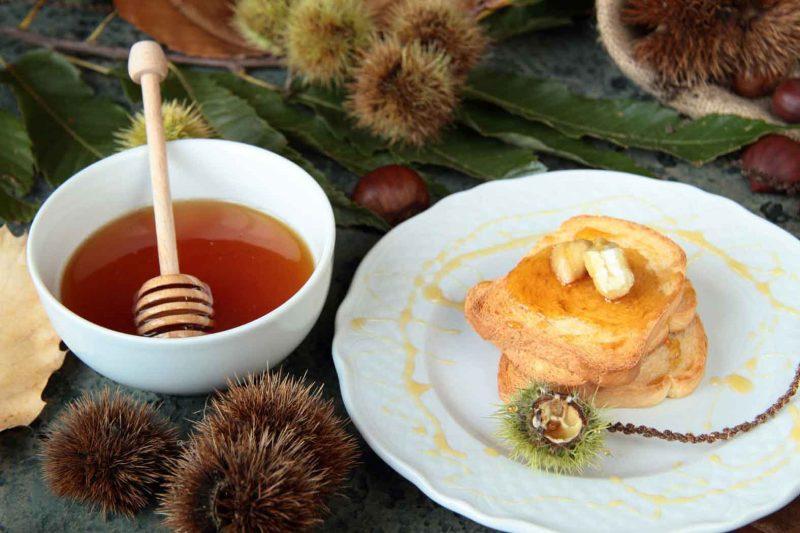 Полезные свойства и противопоказания каштанового мда лечебные особенности продукта