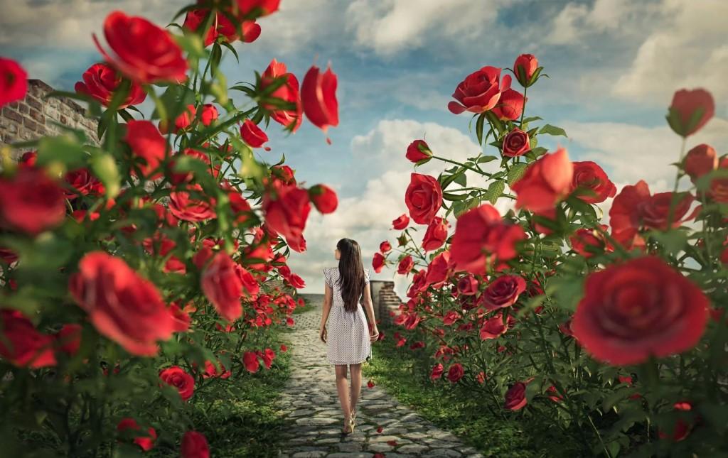 Сонник подарили цветы живые