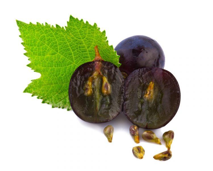Можно ли есть косточки винограда, полезно ли кушать с косточками