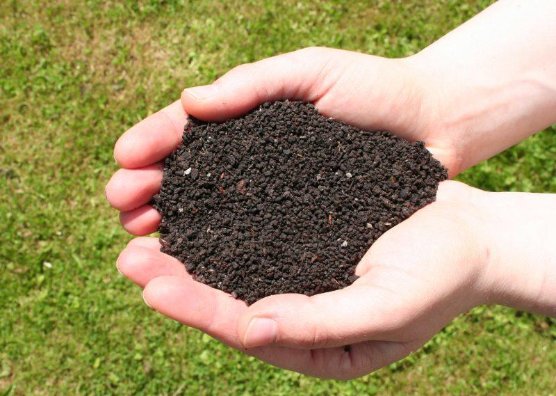 http://usadjba68.ru/vermikultivirovanie/chto-takoe-biogumus