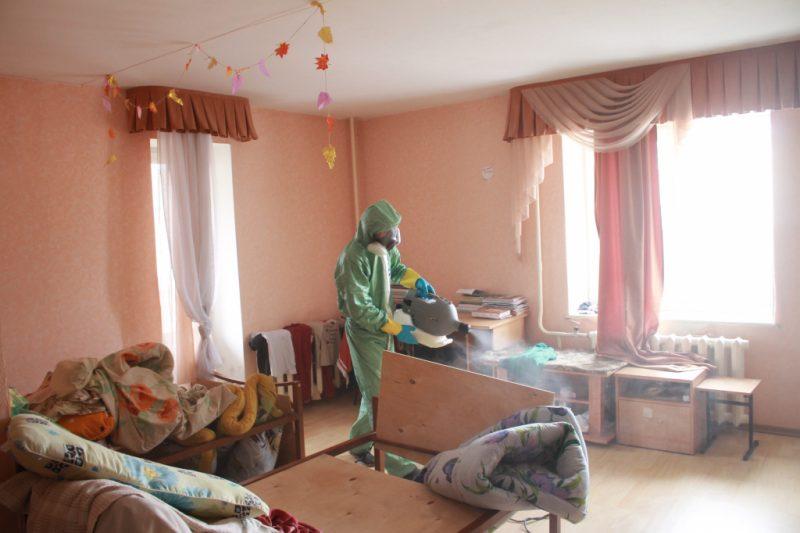 Как разводить карбофос от клопов в квартире