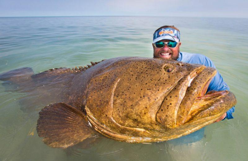 К чему снится гигантская рыба