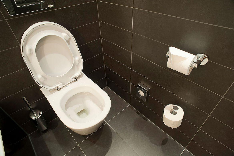 Сонник туалет к чему снится  туалет во сне