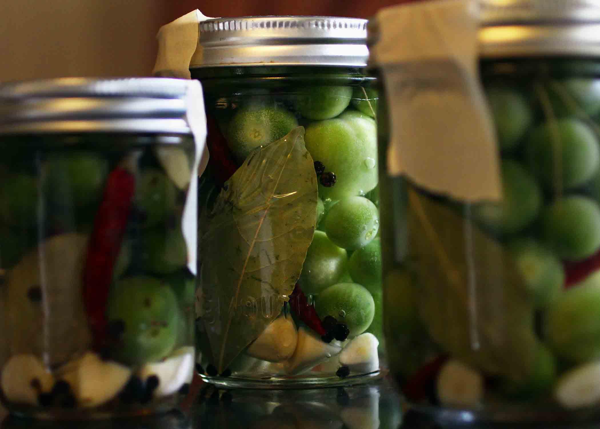 Малосольные зеленые помидоры быстрого приготовления. Как сделать зеленые малосольные помидоры в кастрюле