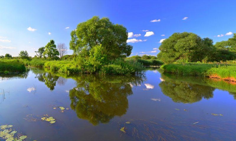 Сонник Река К чему снится Река во сне женщине и мужчине