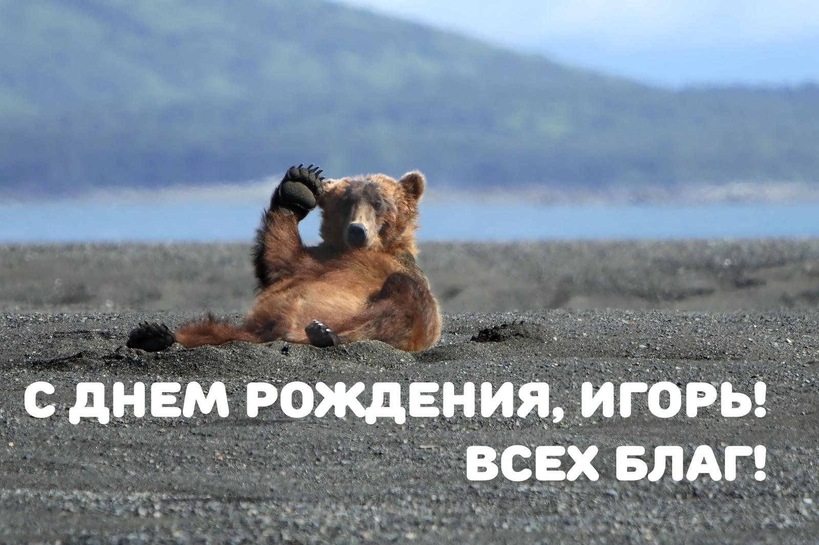 Игорь юмористические поздравления с днем рождения