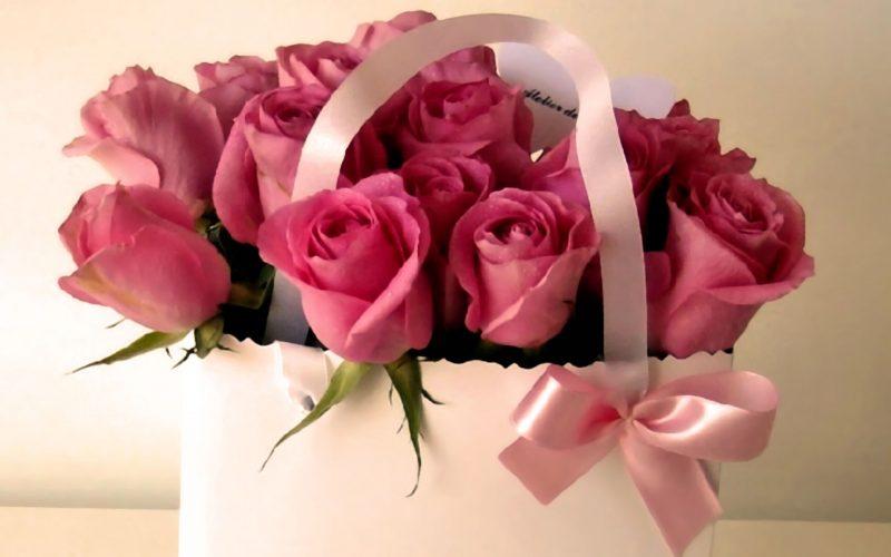 Поздравления с Днем Рождения :) - Страница 14 BeautifulFlowersHQWallpapers-0344-800x500