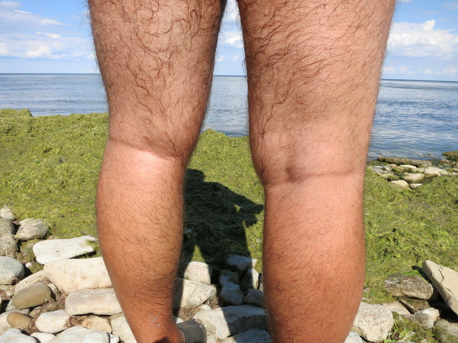 волосатые женские ноги видео онлайн проснулась уже