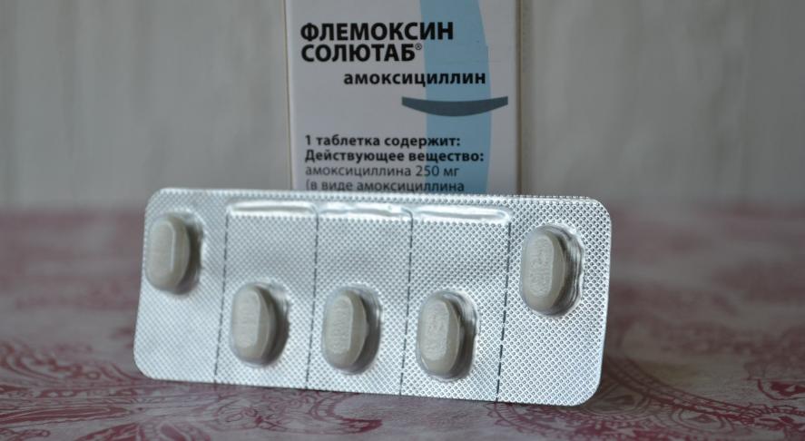 Флемоксин солютаб через сколько действует